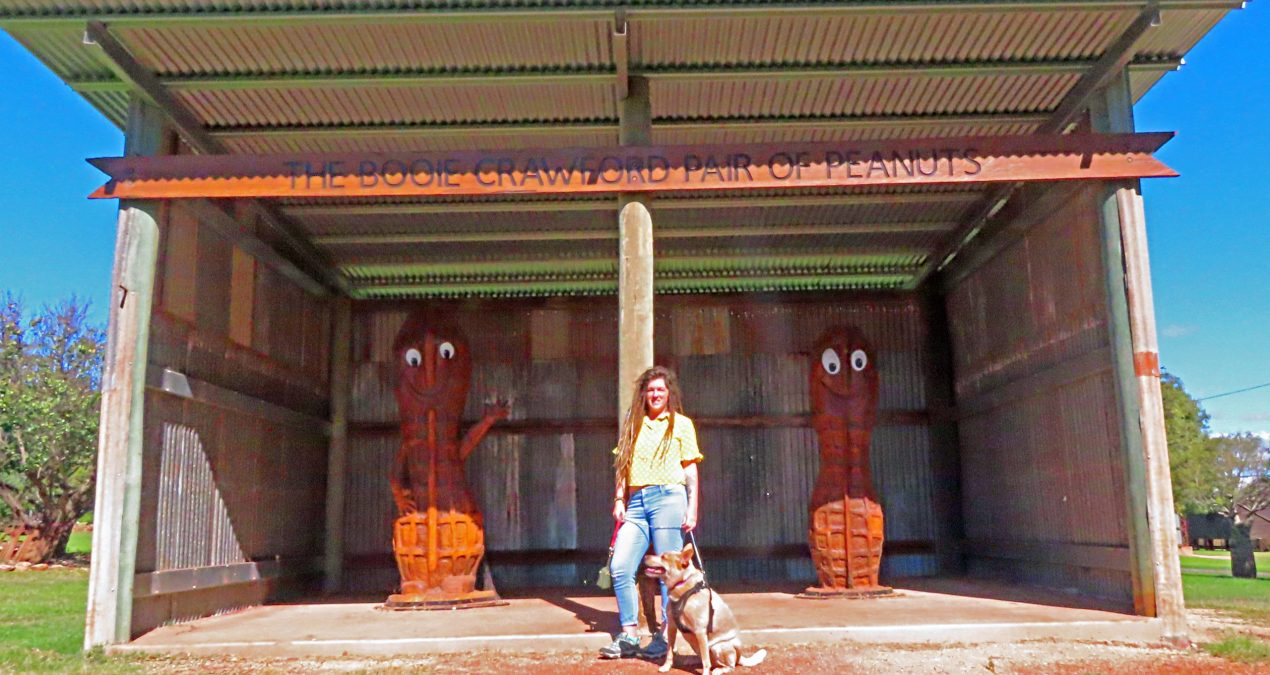 What is there to do in Kingaroy?